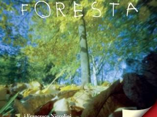 la grande foresta foto lucia baldini