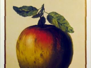magritte-rene-ceci-n-est-pas-une-pomme